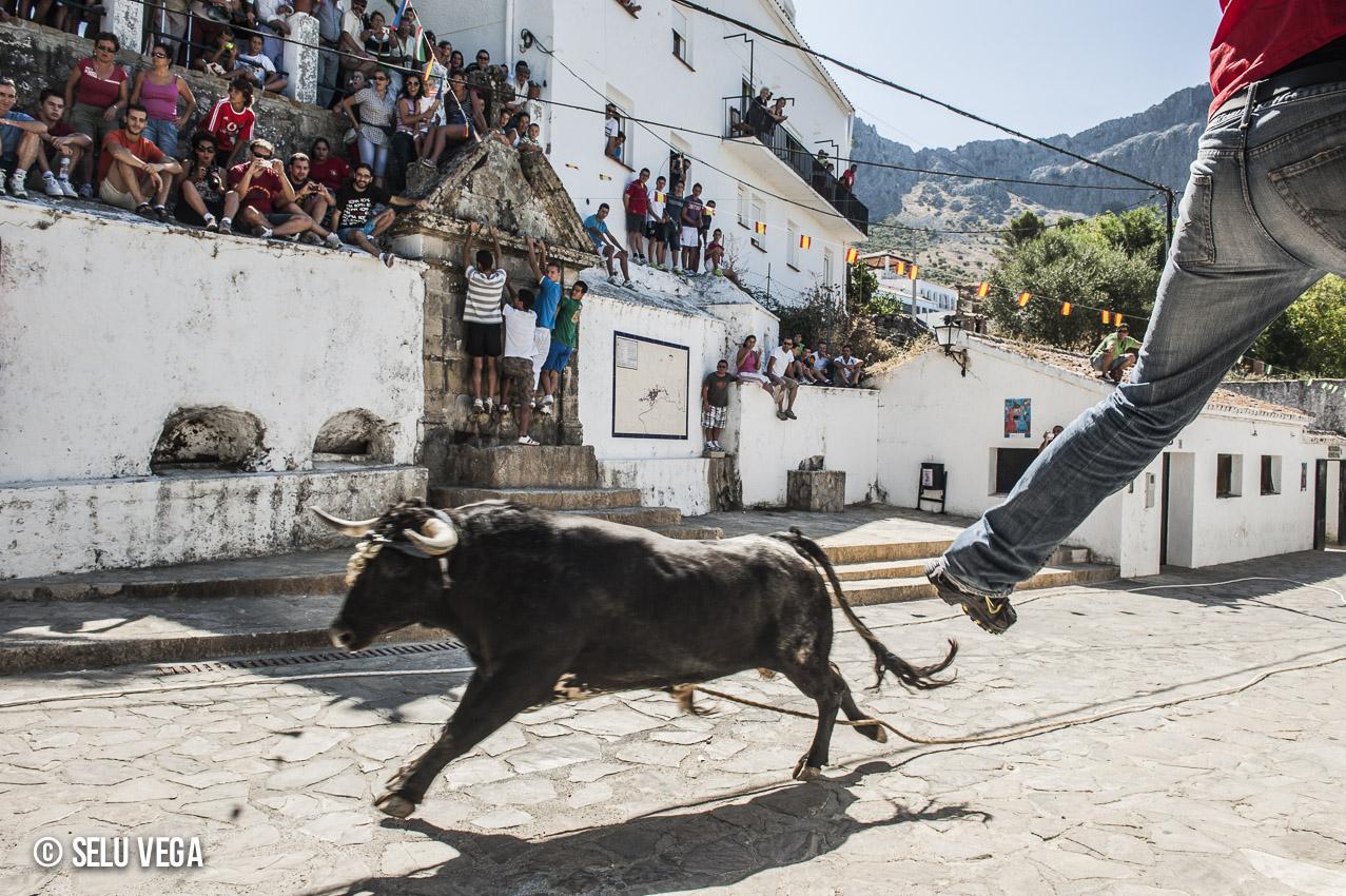 El Toro de Cuerda Si yo pintara una sierra, Benaocaz (3 de 3)