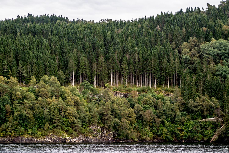 Fiordos Noruegos, amando el mundo Fotos individuales